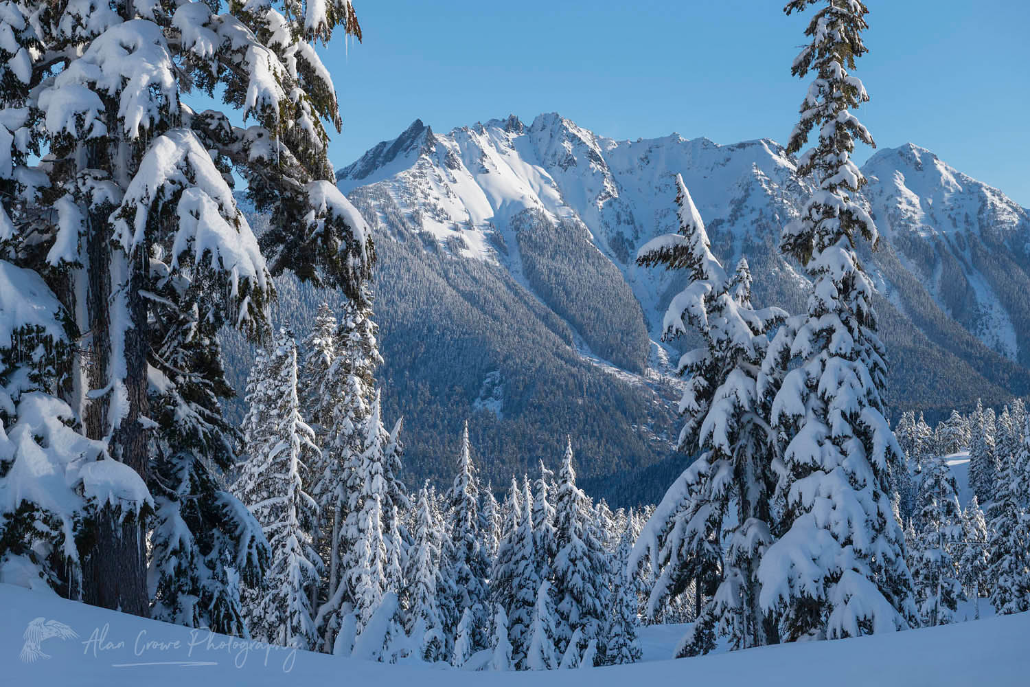 Nooksack Ridge in winter North Caascades Washington