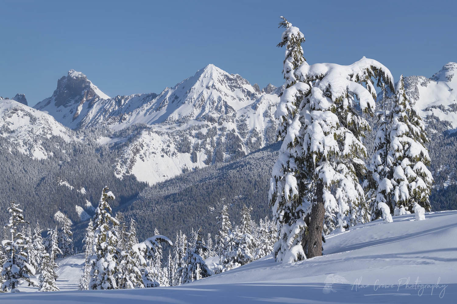 American Border Peak and Mount Larrabee in winter