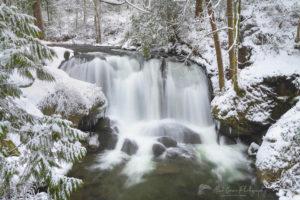 Whatcom Falls Bellingham Washington