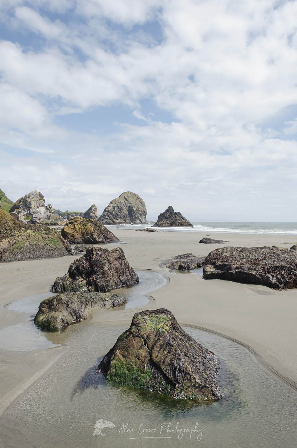 Harris Beach State Park Oregon