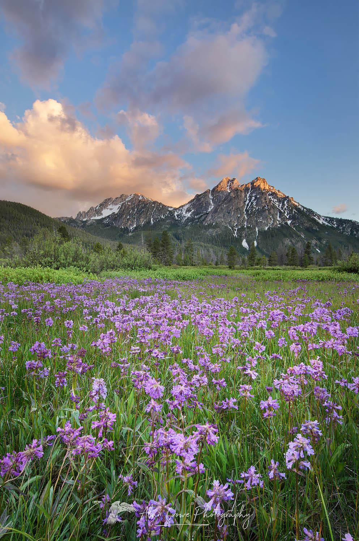 McGown Peak Sawtooth Mountains, Idaho