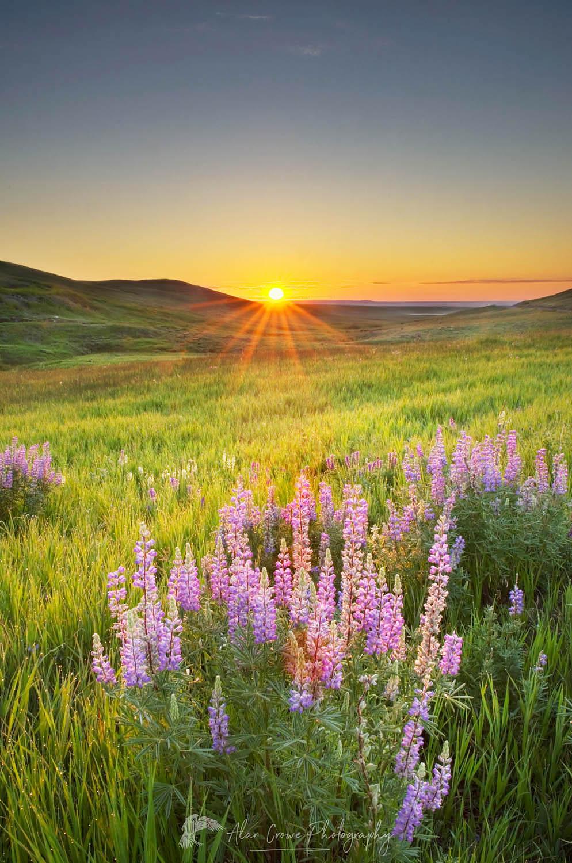 Prairie sunrise near Choteau Montana