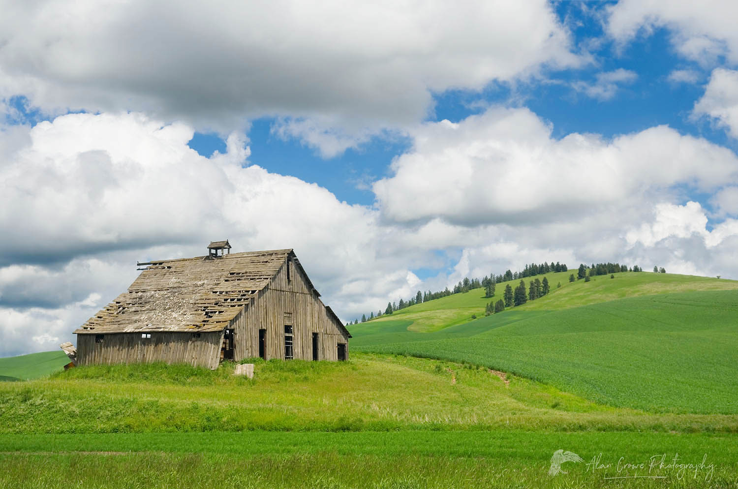Barn Palouse region Washington