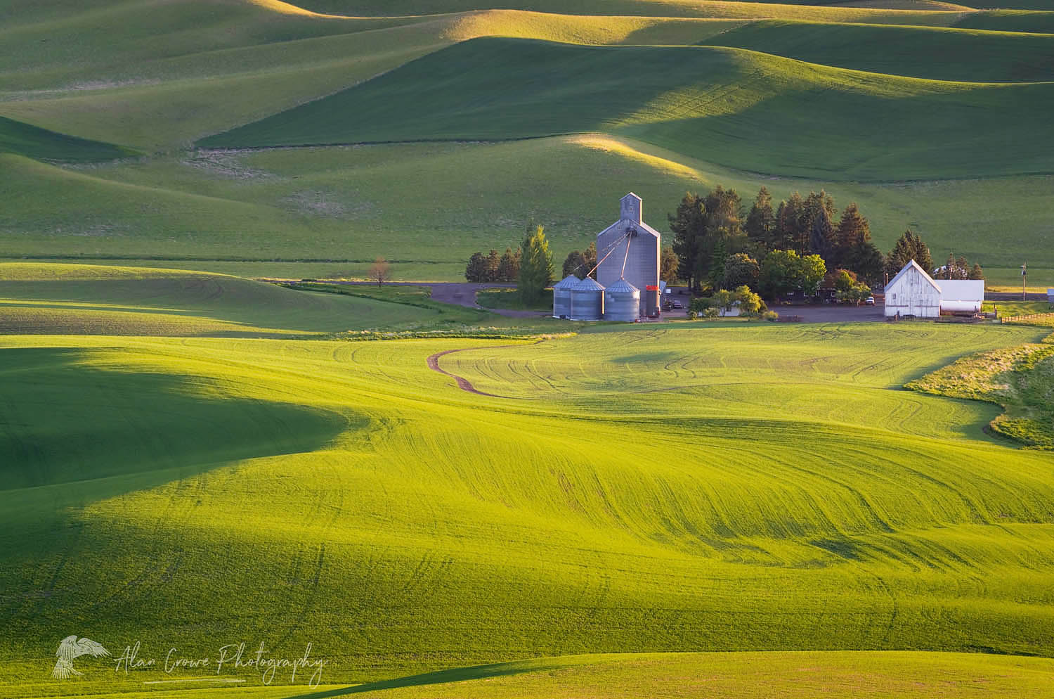 Palouse Farm Washington