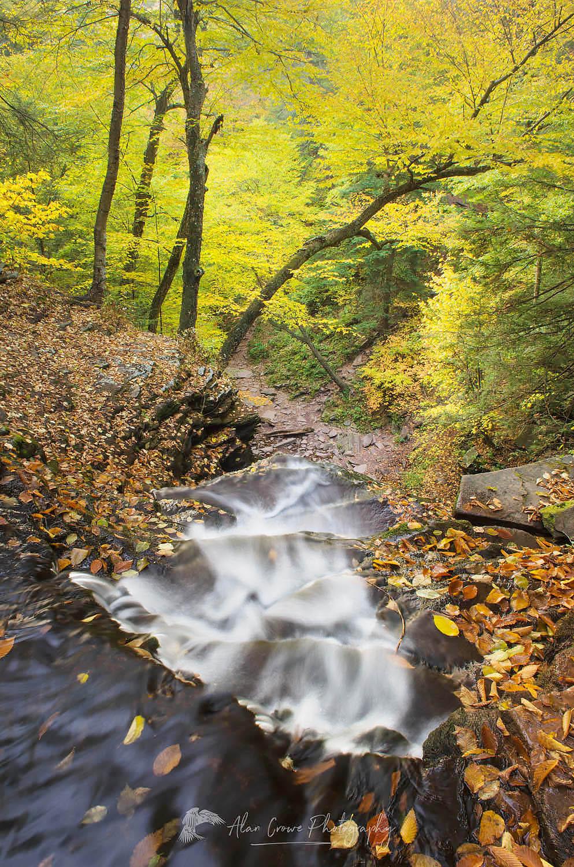 Ganoga Falls Ricketts Glen