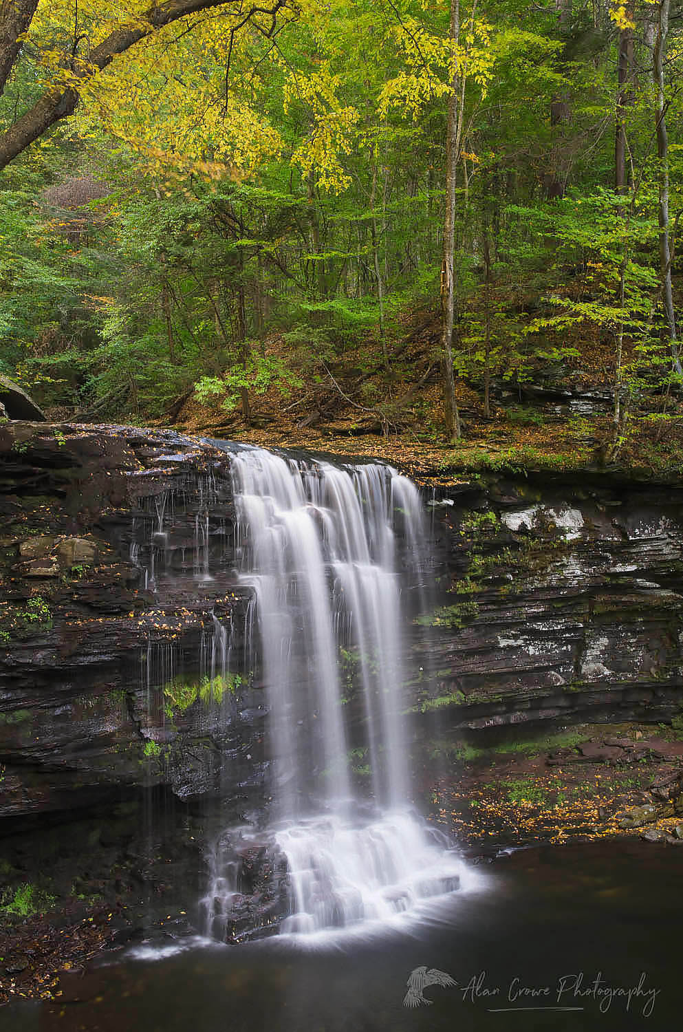 Harrison Wrights Falls Ricketts Glen