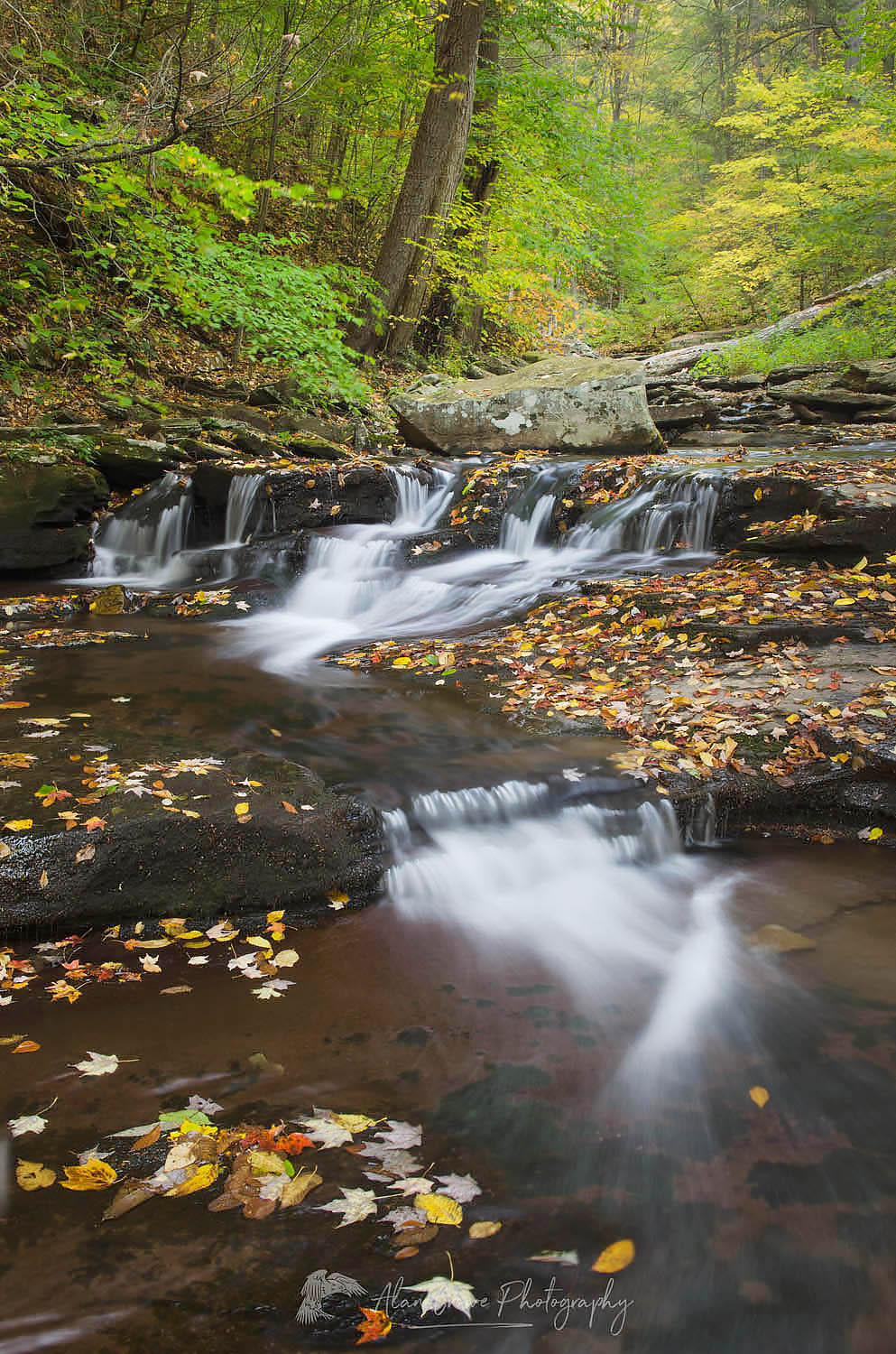 Ricketts Glen Pennsylvania