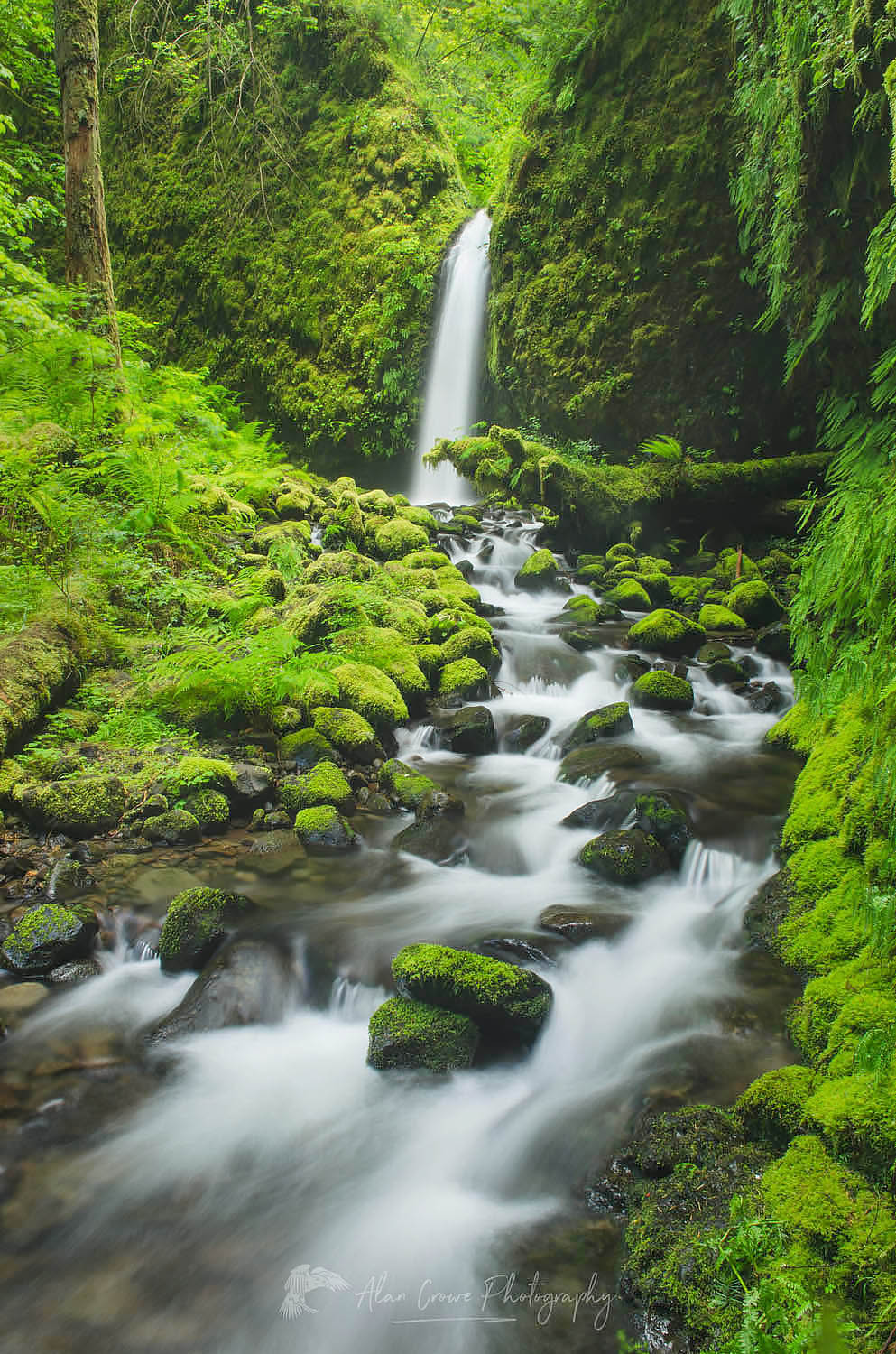 Ruckel Creek waterfall Columbia River Gorge