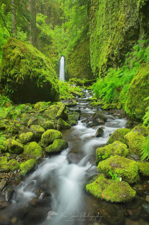 Ruckel Creek waterfall Columbia River Gorge