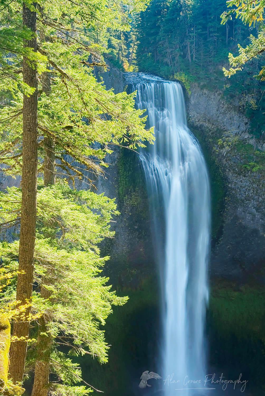 Salt Creek Falls Oregon