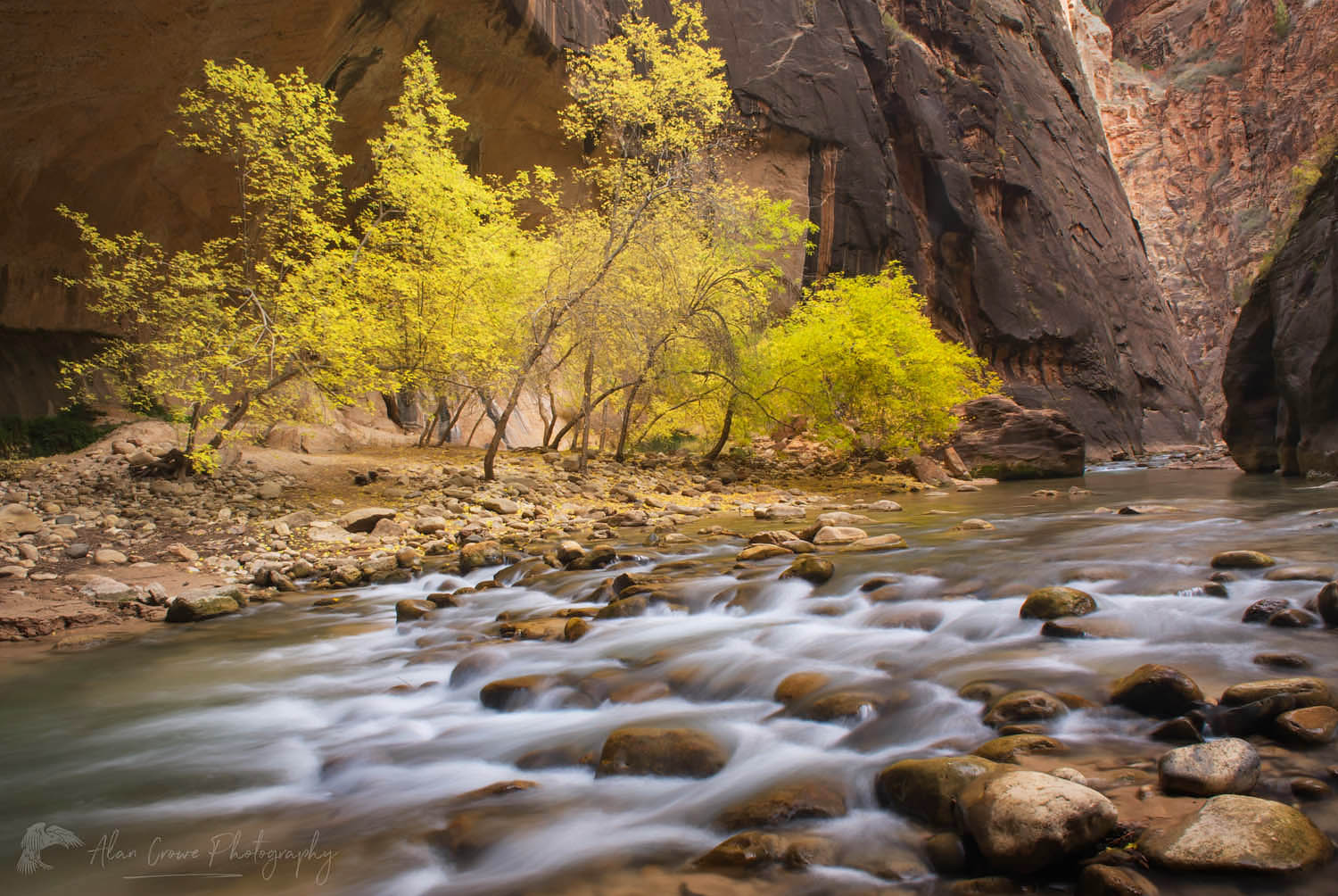 Virgin River Zion Canyon