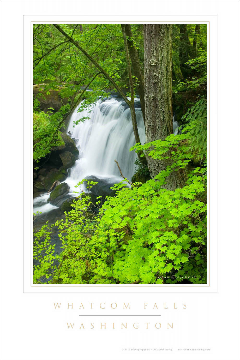 Whatcom Falls Washington